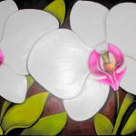 fabiana_kaled_artista_plastico_orquidea-branca-pronec-0196-1881x1080