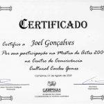 mostra_de_artes_2009_centro_de_convivencia_cultural_carlos_gomes