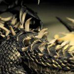 akalameetv206_maga-margareth_drebes-md_dragons