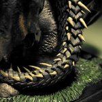 akalameetv307_maga-margareth_drebes-md_dragons