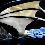 amurozond03_maga-margareth_drebes-md_dragons