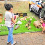 policia_militar_promove_acao_civico_social_no_bairro_martins_em_uberlandia-31