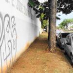 vereador-ceara-de-uberlandia-fazendo-capina-de-escola-estadual-bairro-osvaldo-daniel-fonsecawhatsapp-image-2019-11-20-at-07-48-25-3